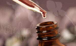 Placenta Services